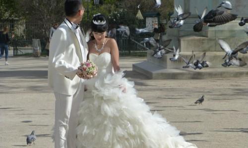 Im Schatten der Braut?
