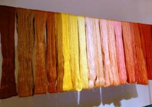 Stränge aus Seidengarn mit natürlicher  Pflanzenfarbe gefärbt. Foto © Rose Wagner
