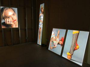 Blick in den Eingangsbereich der Ausstellung. Foto © Rose Wagner